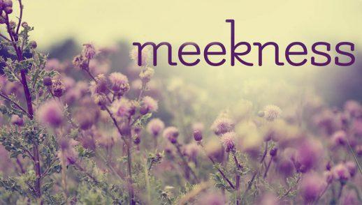 Meekness - http://rccgiqaluit.ca
