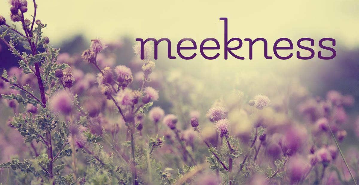 Meekness - https://rccgiqaluit.ca